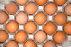 Eggs in protective pack Royalty Free Stock Photos