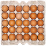 Eggs in protective packaging Royalty Free Stock Photos