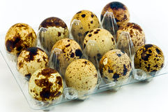 Eggs quail Stock Photos
