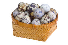 Eggs of  quail in basket Stock Photography