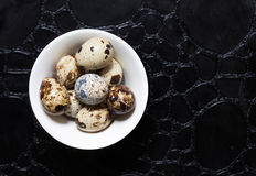 Eggs of quail on the black background. Some eggs of quail on the black background stock photo
