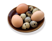 Eggs of the quail and of the hen on the plate Stock Image
