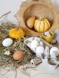 Eggs and quail eggs in a package, pumpkins , hay, Easter concept, preparation for the holiday, harvest, seasonal holidays. Village, farm, subsistence farming stock image