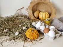 Eggs and quail eggs in a package, pumpkins , hay, Easter concept, preparation for the holiday, harvest, seasonal holidays. Village, farm, subsistence farming stock photos
