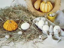 Eggs and quail eggs in a package, pumpkins , hay, Easter concept, preparation for the holiday, harvest, seasonal holidays. Village, farm, subsistence farming royalty free stock images