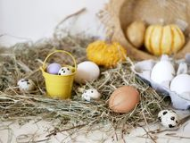 Eggs and quail eggs in a package, pumpkins , hay, Easter concept, preparation for the holiday, harvest, seasonal holidays. Village, farm, subsistence farming royalty free stock photography