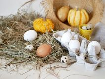Eggs and quail eggs in a package, pumpkins , hay, Easter concept, preparation for the holiday, harvest, seasonal holidays royalty free stock images