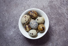 Eggs of quail on the stone background. Some eggs of quail on the stone background Stock Image