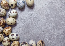 Eggs of quail on the stone background. Some eggs of quail on the stone background royalty free stock images