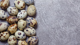 Eggs of quail on the stone background. Some fresh eggs of quail on the stone background Royalty Free Stock Photo