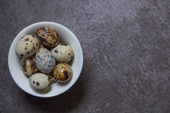 Eggs of quail on the stone background. Some fresh eggs of quail on the stone background Stock Photography