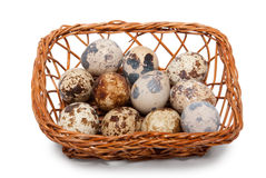 Eggs of quail in wattled basket Royalty Free Stock Photography