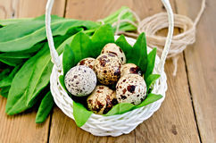 Eggs quail in a white basket with sorrel on the board. Quail eggs in a white wicker basket with sorrel, a coil of rope on the background of wooden boards Royalty Free Stock Photos