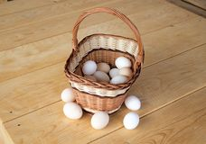 Eggs 3 Royalty Free Stock Photography