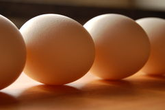 Eggs in queue Royalty Free Stock Photos
