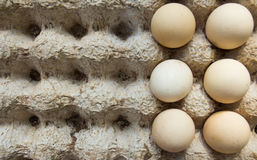 Eggs rack texture stock images