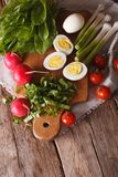 Eggs, radishes and sorrel for spring salad vertical top view. Eggs, radishes and sorrel for spring salad closeup. vertical top view Royalty Free Stock Image