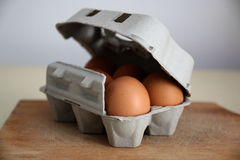 Eggs. Raw eggs in a box Stock Image
