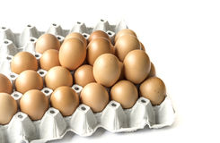 Eggs Stock Photos