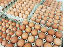 Eggs are the raw materials used in cooking and the ingredients of the cake. . Eggs are the raw materials used in cooking and the ingredients of the cake stock photo