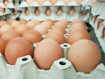 Eggs are the raw materials used in cooking and the ingredients of the cake. Add protein to the body stock image