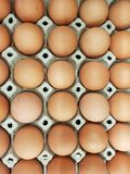Eggs are the raw materials used in cooking and the ingredients of the cake. Add protein to the body stock photos