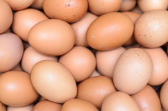 Eggs raw plenty for bacground Royalty Free Stock Image