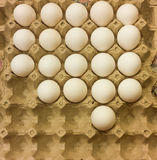 eggs in raw Royalty Free Stock Photos