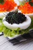 Eggs with red and black fish caviar and lettuce Stock Photo