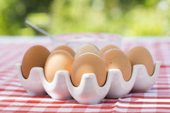Eggs on red checkered tablecloth, Sun light Royalty Free Stock Photos