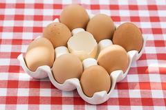 Eggs on red checkered tablecloth, Sun light Stock Photos