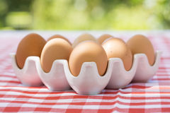 Eggs on red checkered tablecloth, Sun light Royalty Free Stock Photography