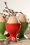 Eggs in red and green eggcups. With catkins Stock Photos