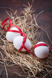 Eggs with a red ribbon on the hay for easter Royalty Free Stock Photo