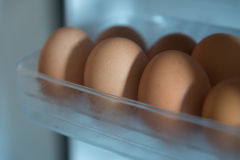 Eggs in refrigerator for with cool temperature Royalty Free Stock Photo