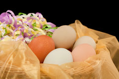 Eggs with Ribbons Stock Image