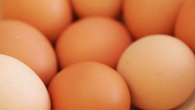 Eggs at rotating stand stock video footage