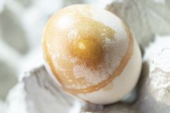Eggs rounded forms. Are painted in the cells of the pressed paper royalty free stock image