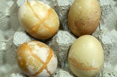 Eggs rounded forms. Are painted in the cells of the pressed paper stock image