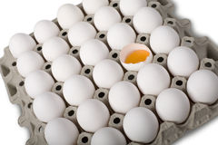 Eggs in a row Royalty Free Stock Photos