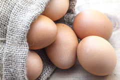 Eggs in sack bag Stock Image