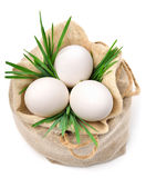 Eggs in the sack with green grass Stock Photography