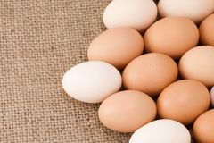 Eggs on sacking Royalty Free Stock Photography