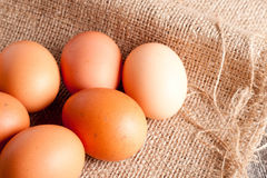 Eggs on a sacking close up Stock Photo