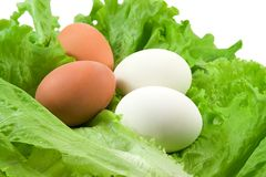 Eggs, salad Stock Images