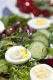 Eggs, salad and mayo Stock Photography