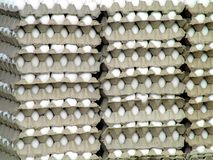Eggs for Sale Stock Photo