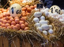 Eggs for sale. At a Europen market Royalty Free Stock Photo