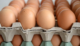 Eggs for sale on  a market. Picture of fresh Eggs for sale on  a market Royalty Free Stock Image