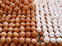 Eggs on sale Stock Photography